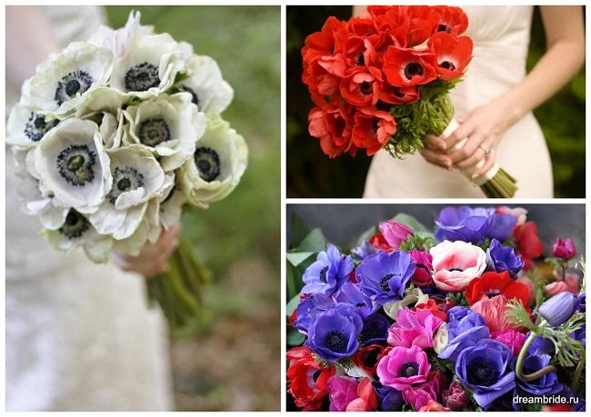 цветы для букетов фото и название: анемона