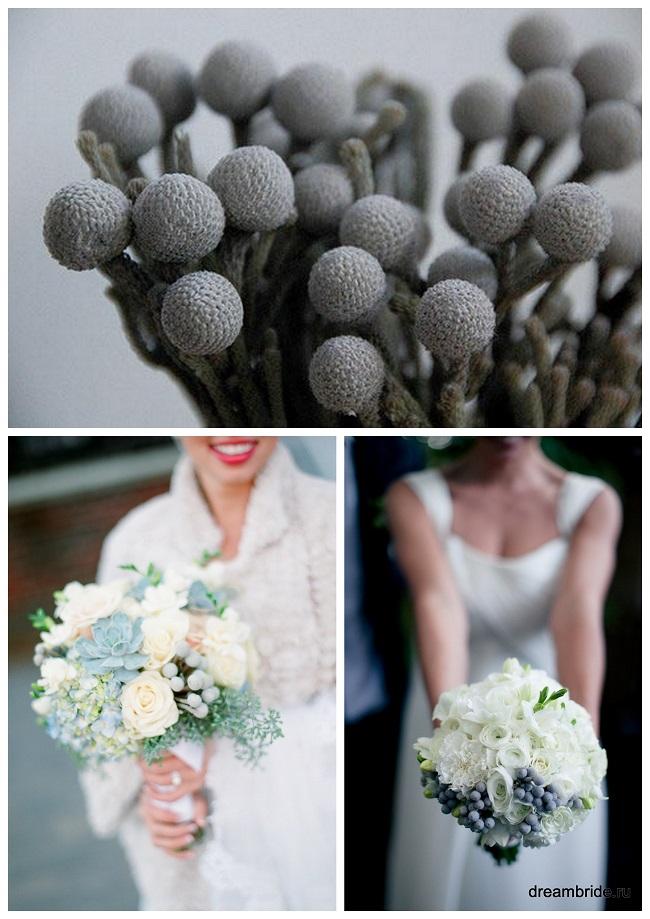 цветы для букетов фото и название: бруния