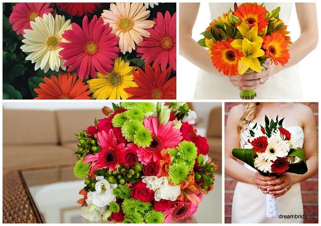 цветы для букетов фото и название: герберы