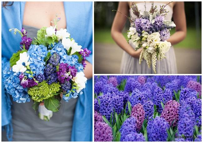 цветы для букетов фото и название: гиацинты