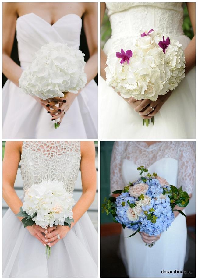 цветы для букетов фото и название: белая и голубая гортензия