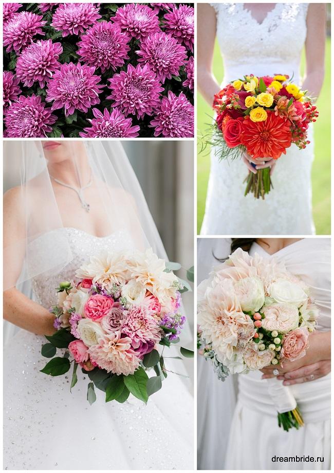 цветы для букетов фото и название: фиолетовые, розовые и красные хризантемы