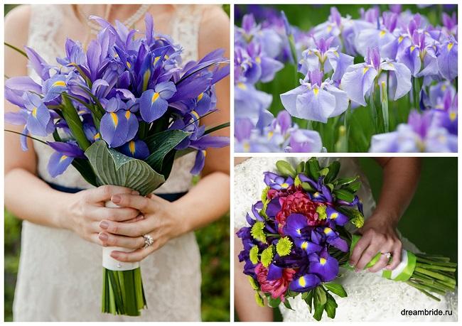 цветы для букетов фото и название: ирисы
