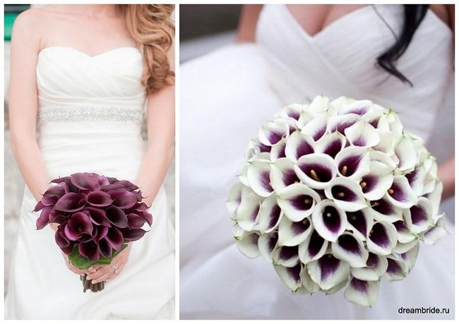 цветы для букетов фото и название: каллы фиолетовые