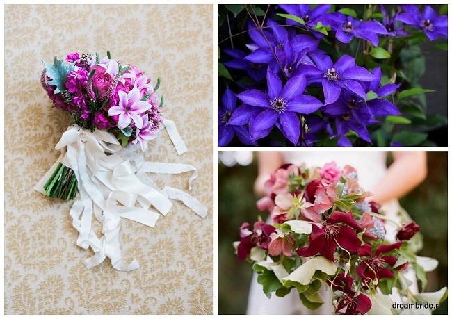 цветы для букетов фото и название: клематис