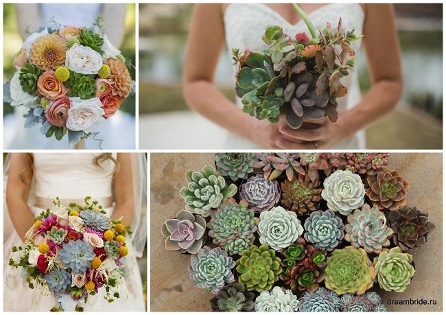 цветы для букетов фото и название: суккуленты