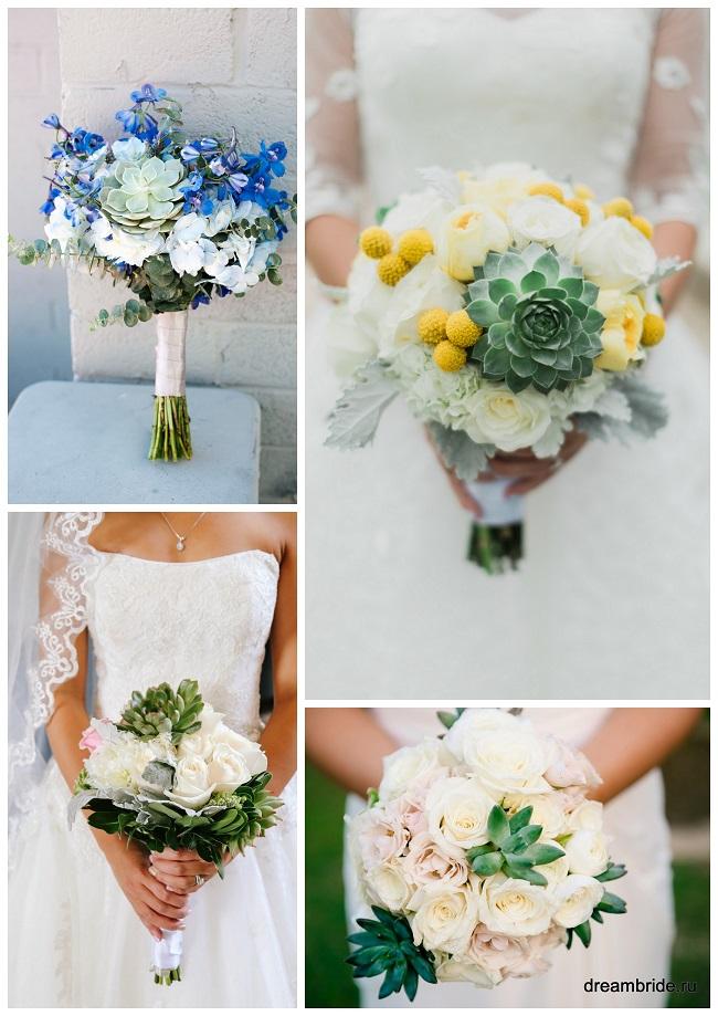 цветы для букетов фото и название :суккуленты